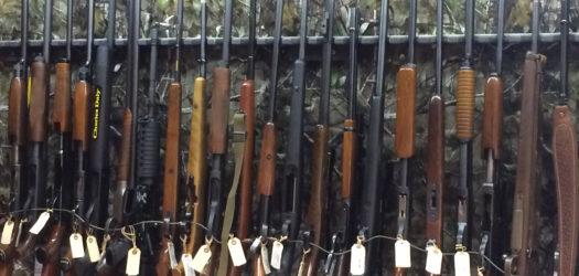 licensed firearm dealer